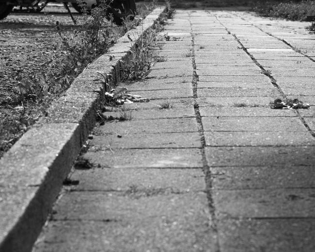 An uneven pavement yesterday. Image: Pixabay