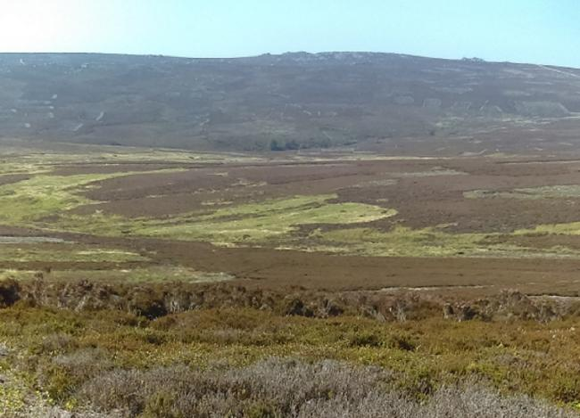 Brown moorland above Storiths