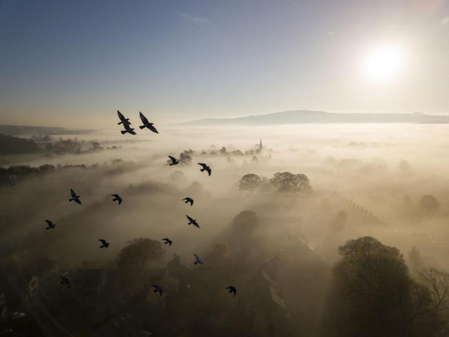 Ilkley photographer Rich Bunce's 'Habitat' category-winning picture in this year's British Wildlife Photography Awards