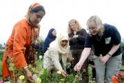 From left, Azmat Bibi, Zahida Iqbal, Helen and community environment worker, Christine Edmonds collect seeds with the gardening group at Scotchman Road Allotments in Manningham