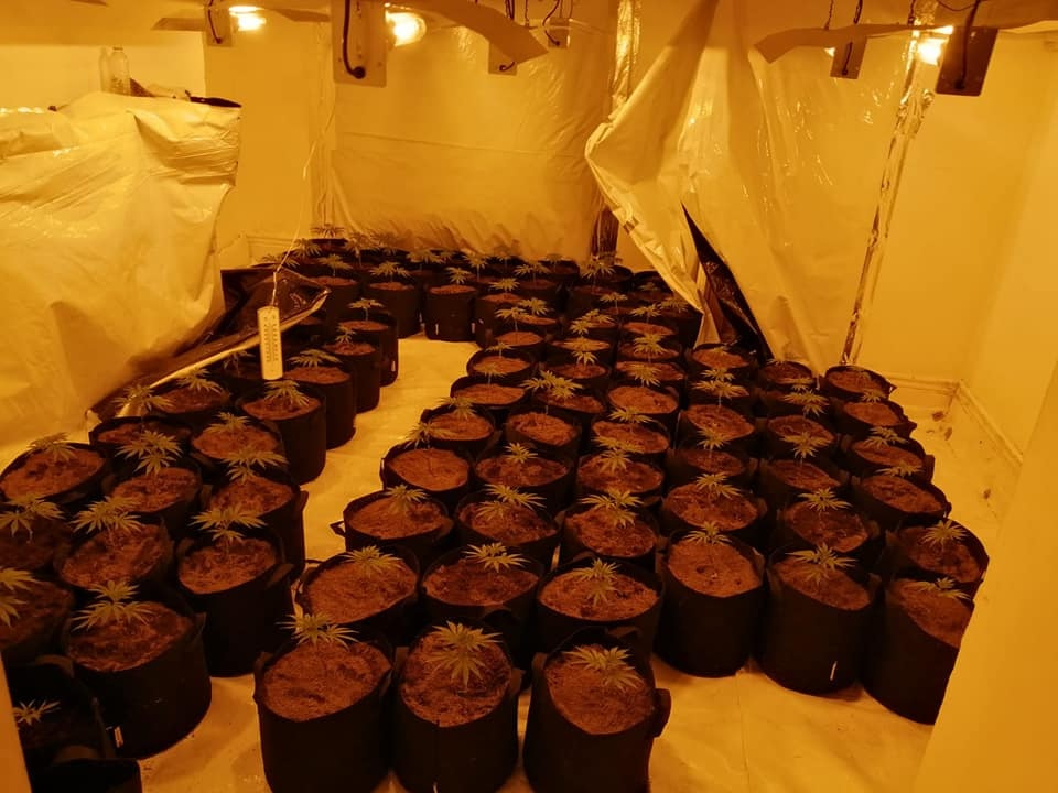 Police bust second cannabis farm in a week in Bradford East