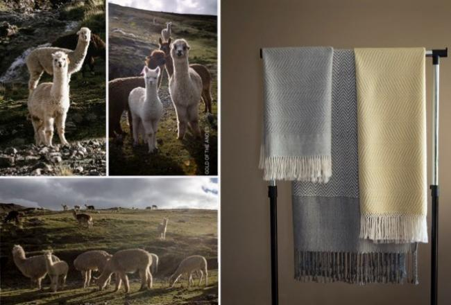 Alpacas in Peru - and some of the throws Aileen Brindle has made from their 'wool'