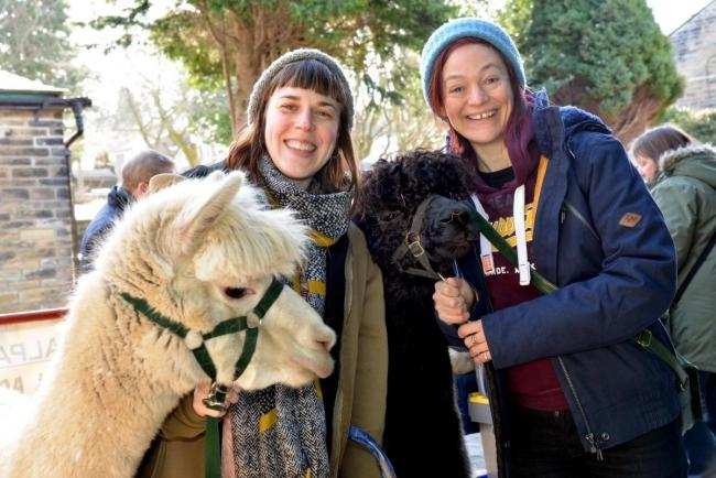 Lara James and Jude Wright make friends with Alpacas Chester and Bruno