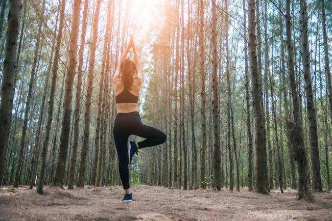 Beautiful Asian young woman standing and doing yoga in forest. Exercise and meditation concept. Pay obeisance or raise hand concept. Pine wood in summer theme. Back view.
