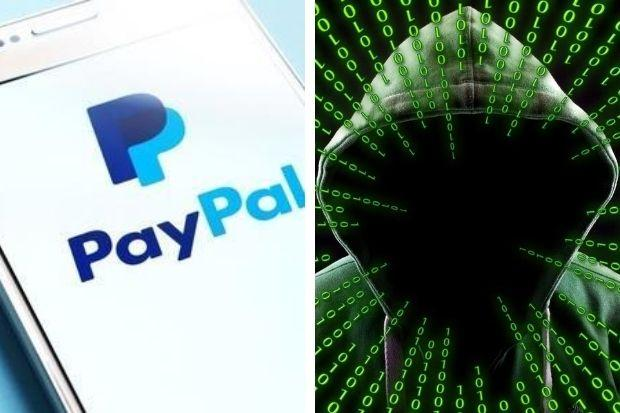 online betting boxing paypal scam