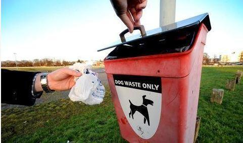 Dog fouling is a big issue in Dams to Darnley Country Park