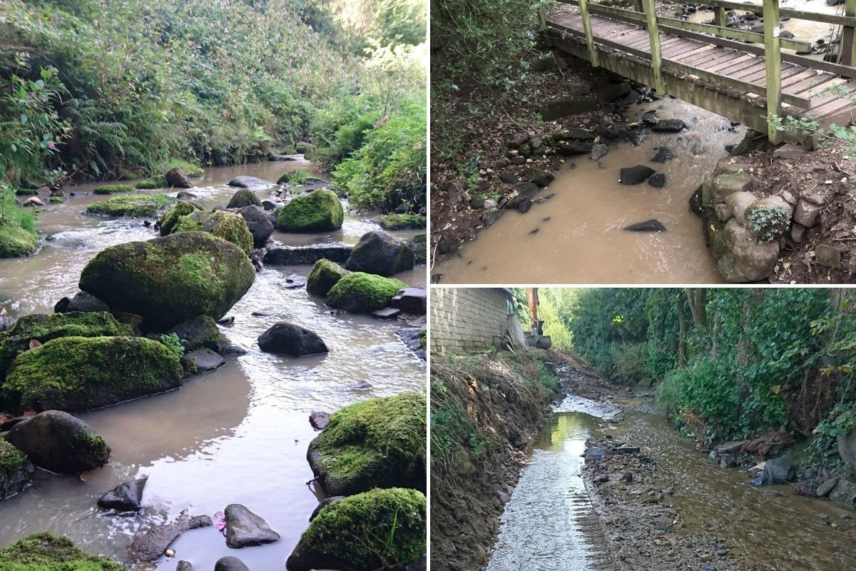 Beck pollution fears after 'brown sluggish stream' spotted