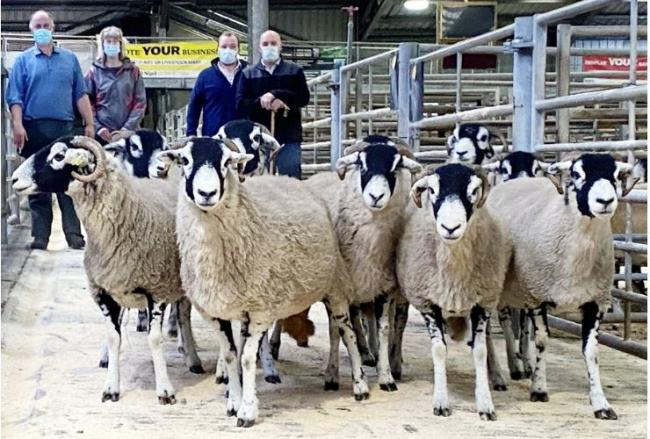 Stuart and Debbie Robinson, left, with their latest Skipton Swaledale ewe champions. Looking on are judges John and Robert Lancaster