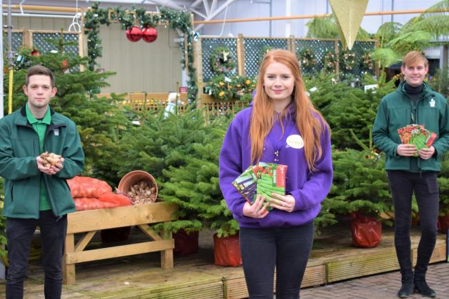 Tong Garden Centre Donates Bulbs And Seeds To Shipley Mental Health Charity The Cellar Trust Bradford Telegraph And Argus