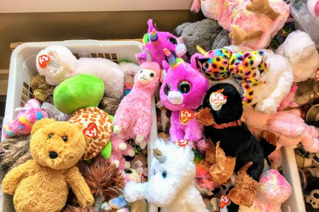 Beanie babies are much sought after. Picture: Christopher Babcock