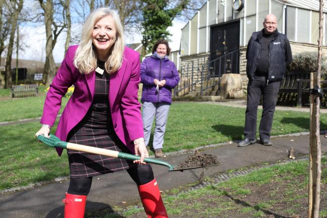 Tracy Brabin MP plants a cherry tree at Bagshaw Museum