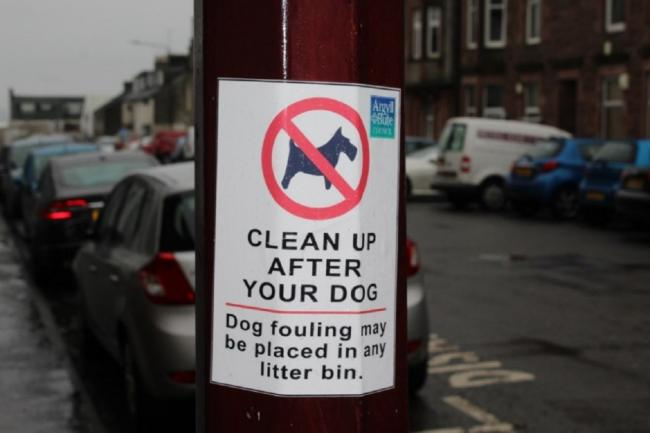 Dog fouling should be cleared up by dog owners
