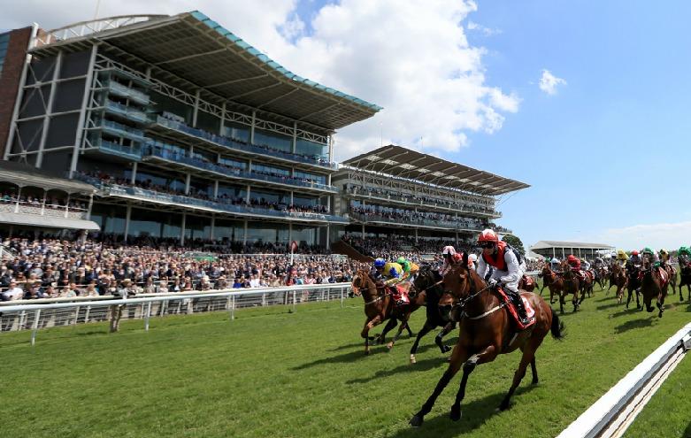 York Racecourse withdraws from Dante Festival pilot exercise