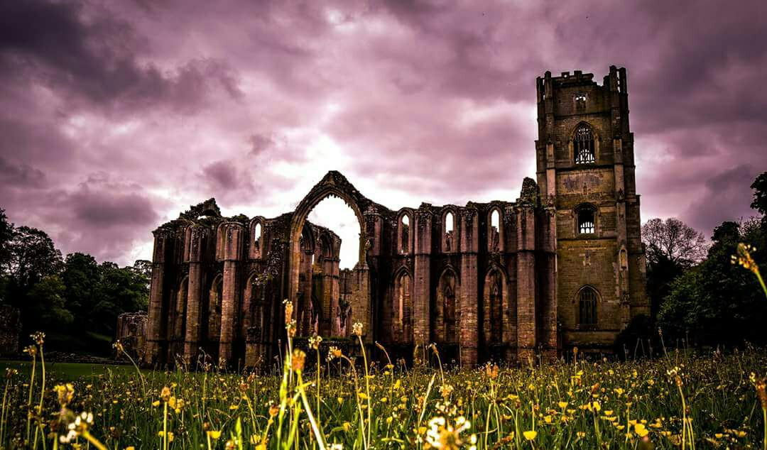 Bradford archaeologists make surprising discovery at Fountains Abbey