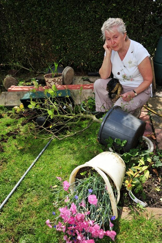 Mrs Thompson looks over the destruction in her Cottingley garden