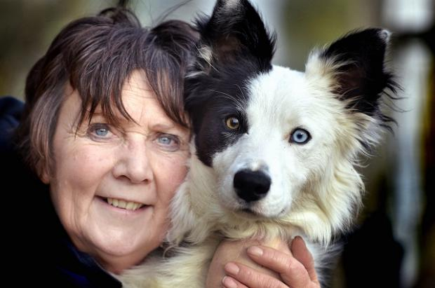 Barbara Sykes with border collie Digby, who she's training to become a sheepdog