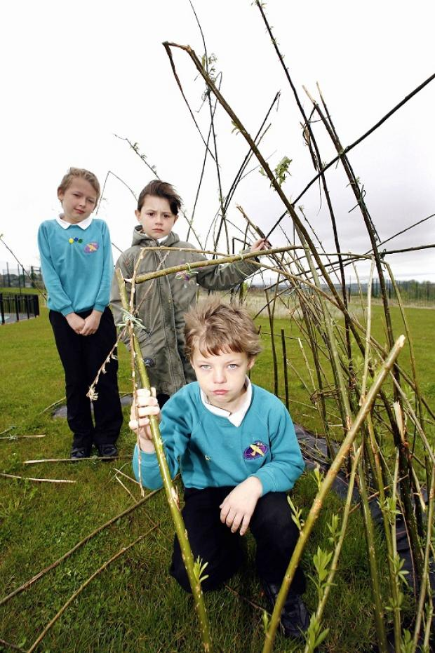Merlin Top Primary School pupils inspect the damaged willow arch. From left: Adam Svav, Imogen Cryer and Ryan Stovold