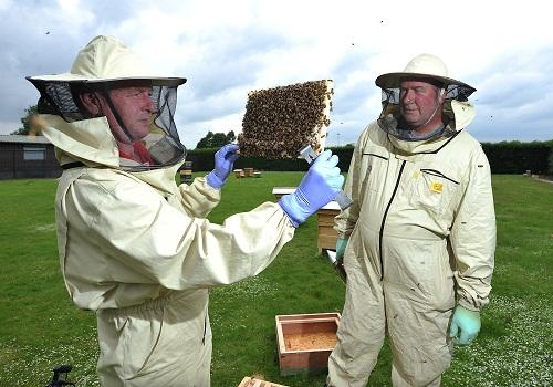 UPSET: Beekeepers Jan Walker (left) and Ian Dwyer with repaired hives, following the attacks