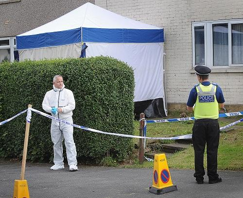 Police and forensic officers at the murder scene in Greengates