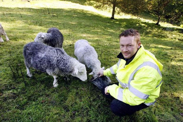 Laycock farmer Philip Garbutt with some of the sheep who survived the dog attacks