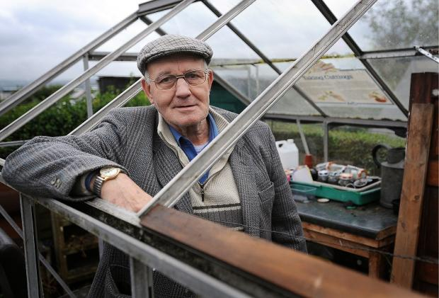 Albert Greenwood in his vandalised greenhouse on the Stanacre Allotments which have been targeted by yobs