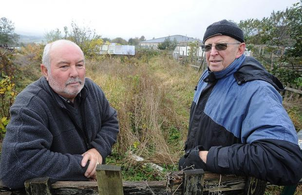 David Priestley and Brian Rayson in one of many unused plots at Bullroyd Allotments