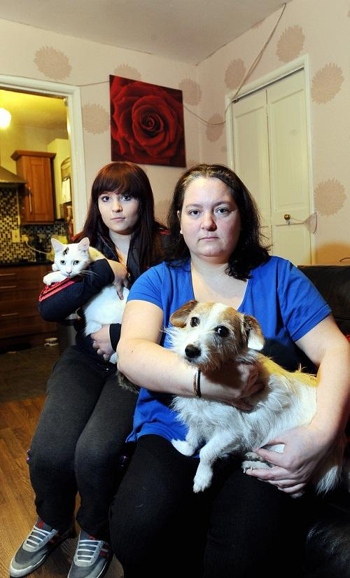 ALERT: Mum Michelle Kear with family dog Tess and daughter Sammie and the family's remaining cat Leo