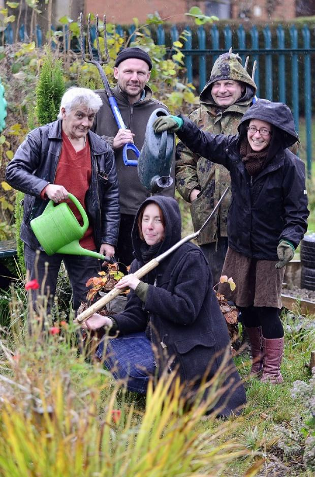 Claire Wellesley-Smith, Hive project co-ordinator, with allotment workers  Vic Buta, Ashley Rose, Geoff Taylor and Rachel Lee tending a plot they share with the HALE project