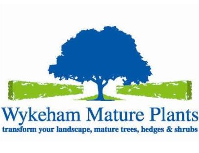 Wykeham Mature Plants