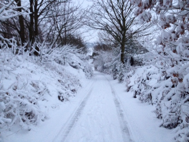 Snow in Oakworth this morning