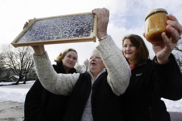 Shelley Hollingdrake (left), of East Riddlesden Hall, looks on as Airedale Beekeepers Association secretary Sue Chatfield and committee member Suzanne Starling (right) display a frame from a 'virtual hive' and a jar of honey