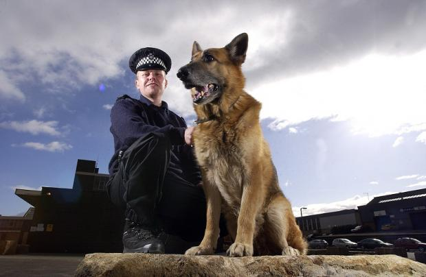 Police dog handler Matthew Lee with Zeus on his retirement in 2007