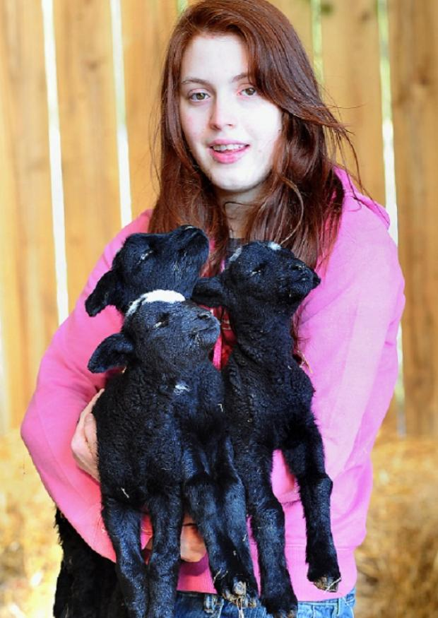 Pictured with the lambs is Meren Wainhouse