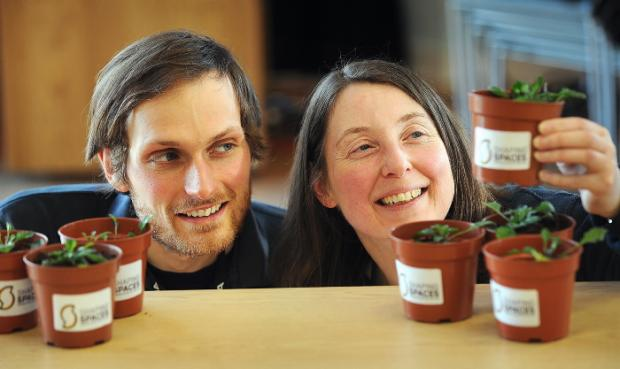 Rachel Deadman and Rob Ashford will run the Shaping Spaces project, to help improve the district's outdoor spaces