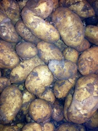 Classics on offer for potato-lovers in Saltaire