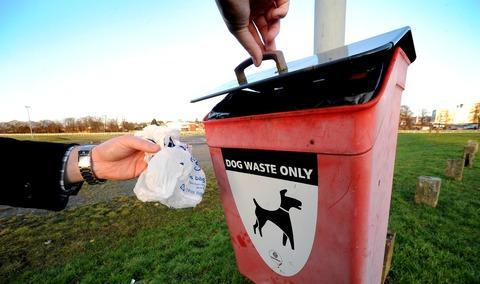 New signs aim to tackle dog mess problems