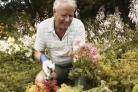 Gardening can be hugely beneficial for those with dementia