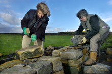 The women dry stone wallers