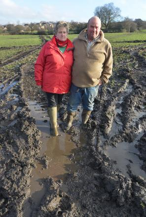 Deborah and Robert Lucas on the grazing field for their horses which has been damaged by large plant
