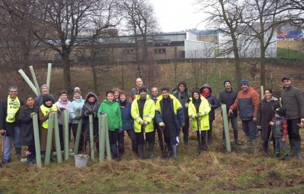 Bradford groups join together to plant trees