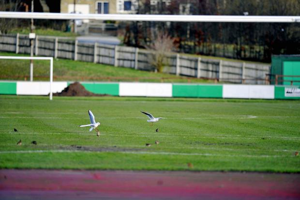 The Horsfall Stadium pitch was left unplayable as Bradford Park Avenue's fixture fell foul of the weather