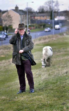 Councillor Andrew Carter is demanding action on the problem of loose horses on land by Dick Lane