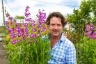 Diarmuid Gavin has tips to brighten up your patio