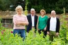 From the left, Fern Britton, Jim Buttress, Thane Prince and Jonathan Moseley in The Big Allotment Challenge