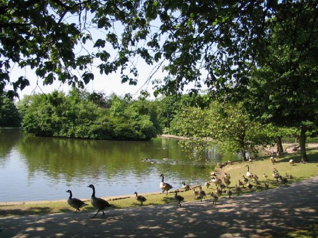 Mick Melvin's photograph of Wibsey Park lake