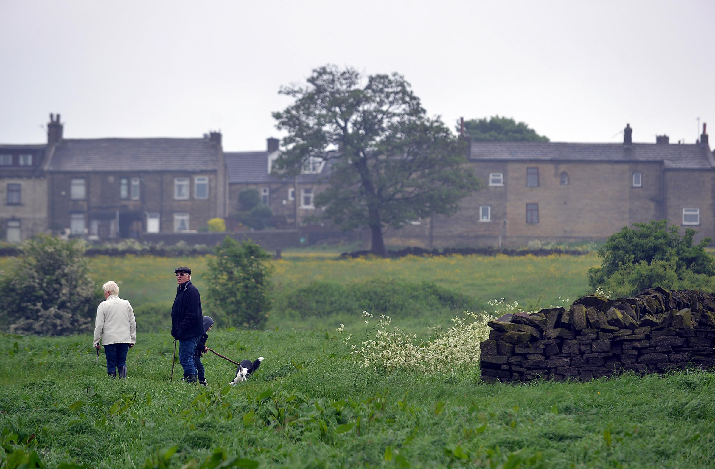The fields in Allerton that could be developed