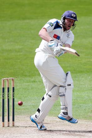 Andrew Gale was unbeaten on 42 at tea