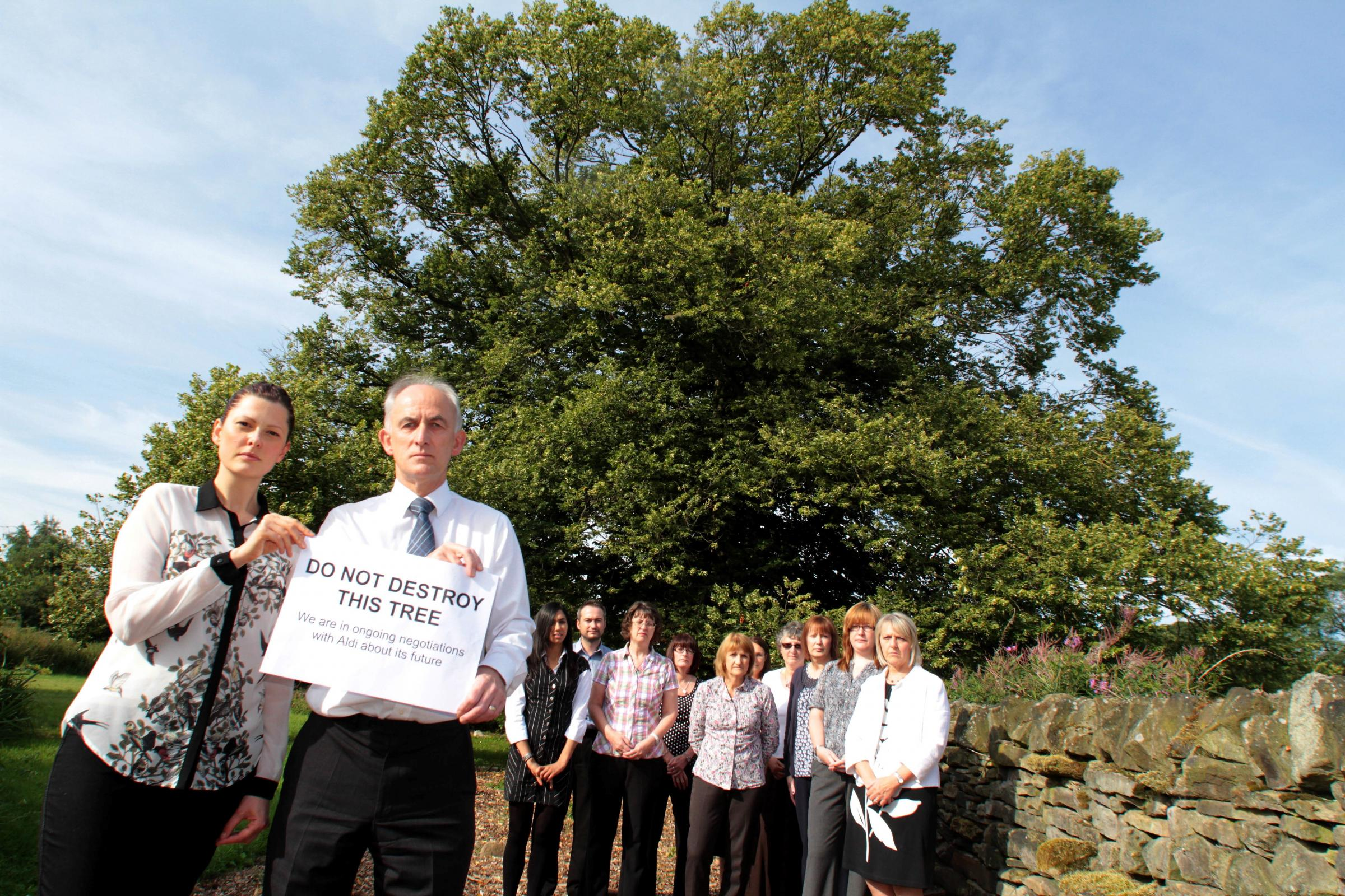Eco workers battle to save historic tree on supermarket development site