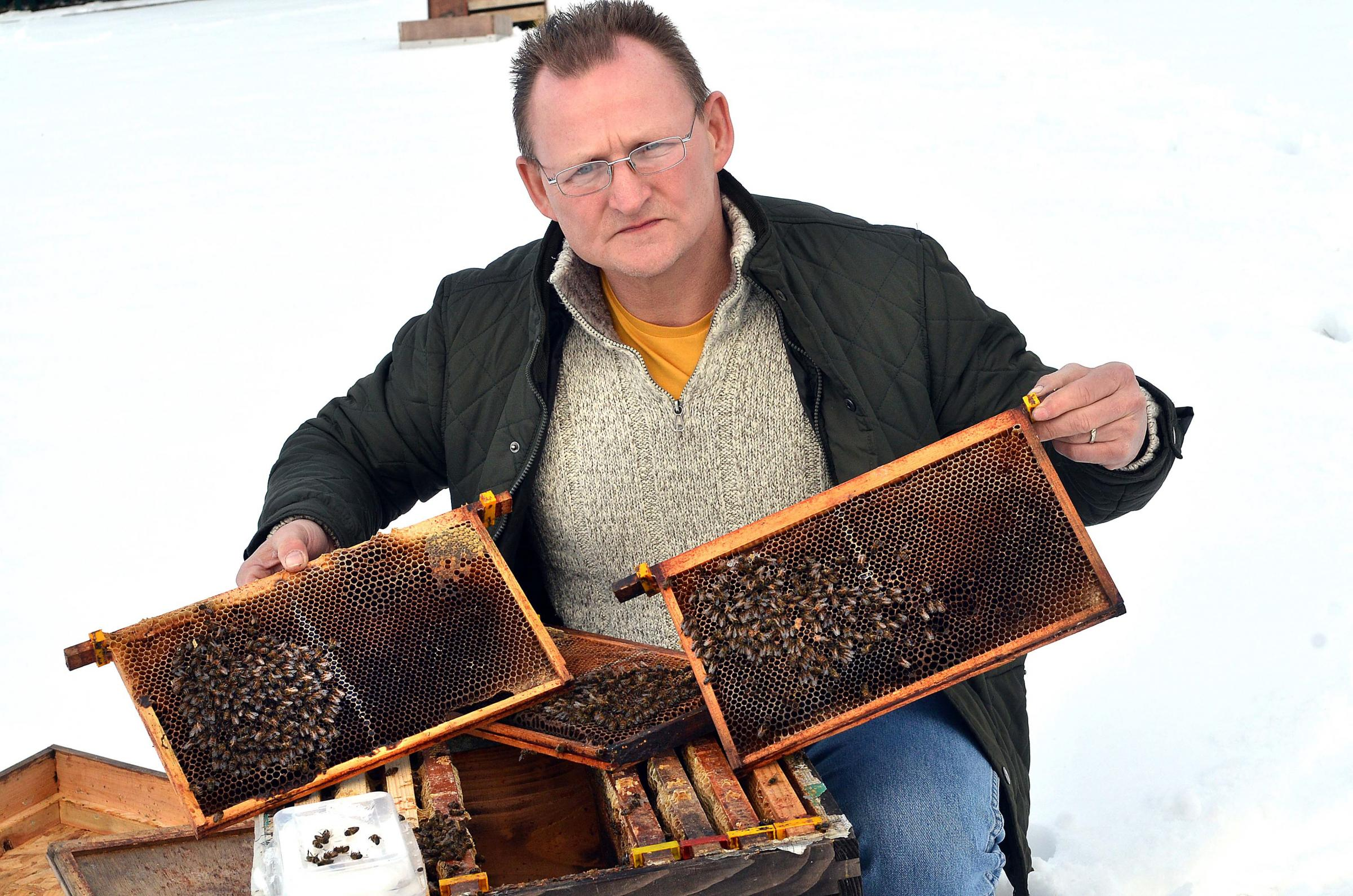 DELIGHTED: David Lamont, vice-chairman of Bradford Beekeepers' Association, which received a grant last year
