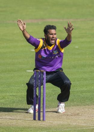 Adil Rashid bagged his first five-wicket haul in 50-over cricket